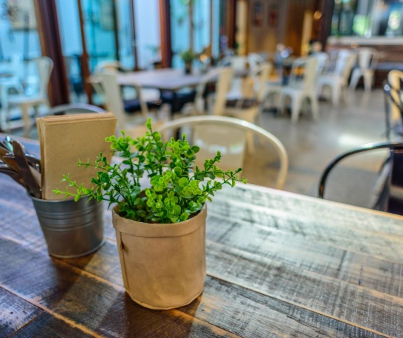 Table in Cafe with plant & Cutlery