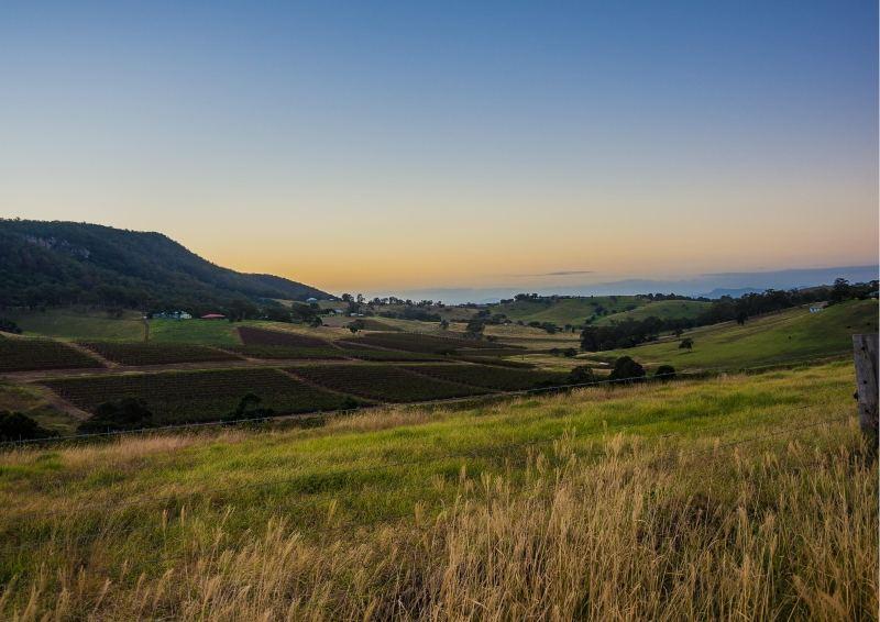 View at Hunter Valley