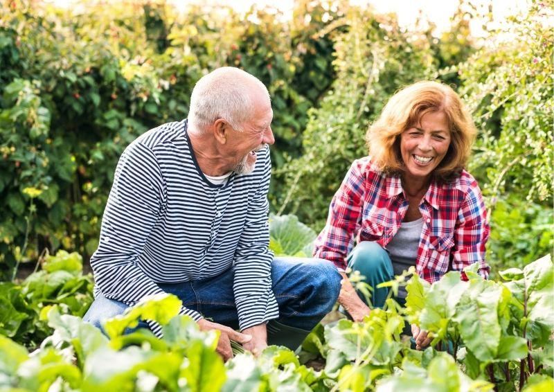 Couple caring for their Garden