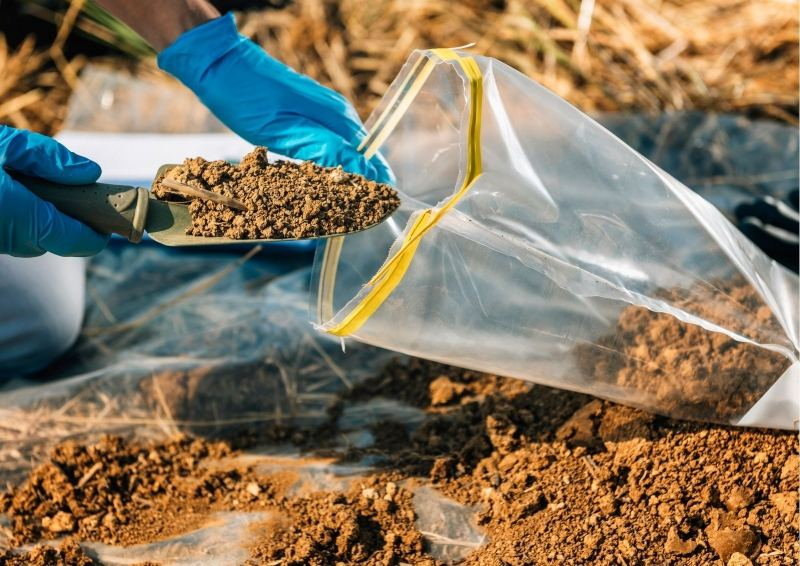 Person putting soil in a bag